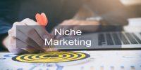 Kelebihan Dan Kekurangan Pemasaran Niche (Ceruk)